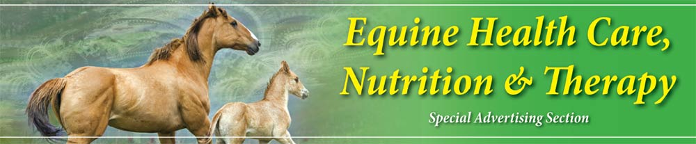Equine Health Care, Nutrition & Therapy Featured Ads