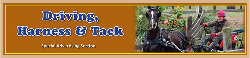 Tack, Harness and Equipment Featured Ads