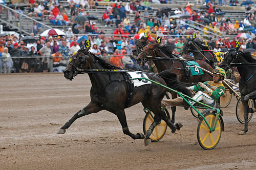 Buck I St Pat Leads Dan Patch Winners with Unanimous Vote