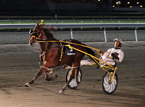 Economy Terror Is Best Two Year Old Pacing Filly