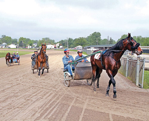 Standardbred Enthusiasts Learn to Race at USTA Driving School