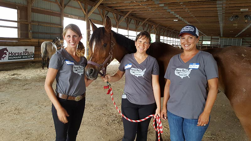 Kristen Breakfield, Tawnee Preisner and Meissa Reall pose with a surrendered Arabian mare
